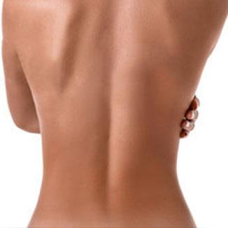 Stomach (back)